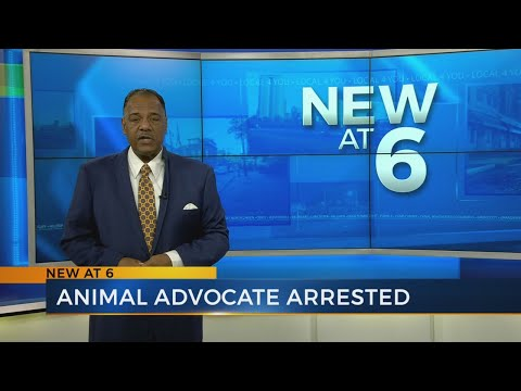 Former Columbus animal activist, humane society director accused of stealing $700,000