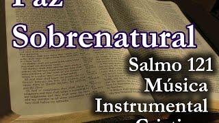 Salmos que traen Paz sobrenatural, Promesa de proteccion de la biblia