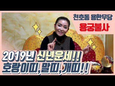 2019년 신년운세!호랑이띠,말띠,개띠!! 서울 천호동 용한무당 용궁불사