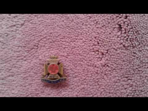 The Wiltshire regiment duke of Edinburgh old comrades association badge and membership card