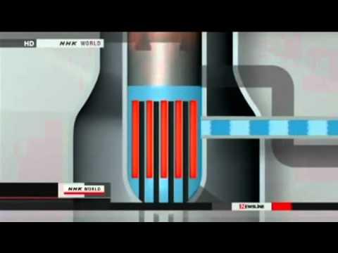 Fukushima Nuclear Facility - Detailed Explanation