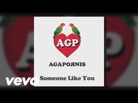 Agapornis - Someone Like You (Pseudo Video)
