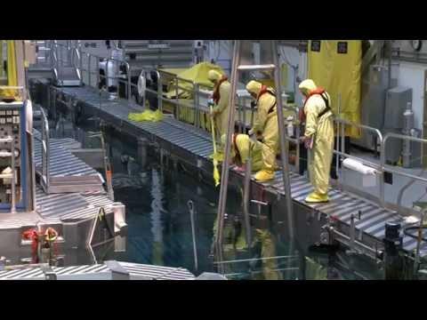 Radiation Worker Good Practices
