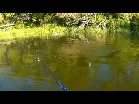 Рыбалка сплавом в жару на реке. Ловля хищника на спиннинг - YouTube