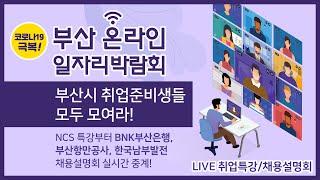 코로나19 극복 부산 온라인 일자리 박람회