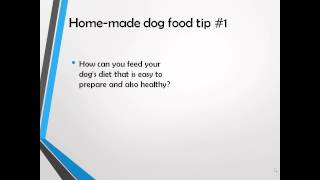 How to Make Homemade Food for Dogs?