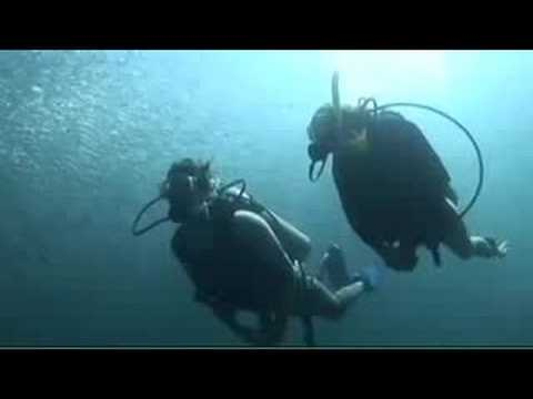 The Try Scuba Diving Experience
