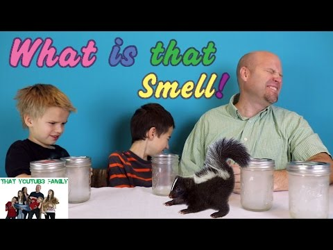 What is that Smell Challenge