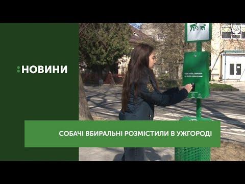 Собачі вбиральні розмістили в Ужгороді