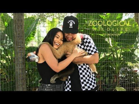 Zoological Wildlife Foundation | CamilaaInc