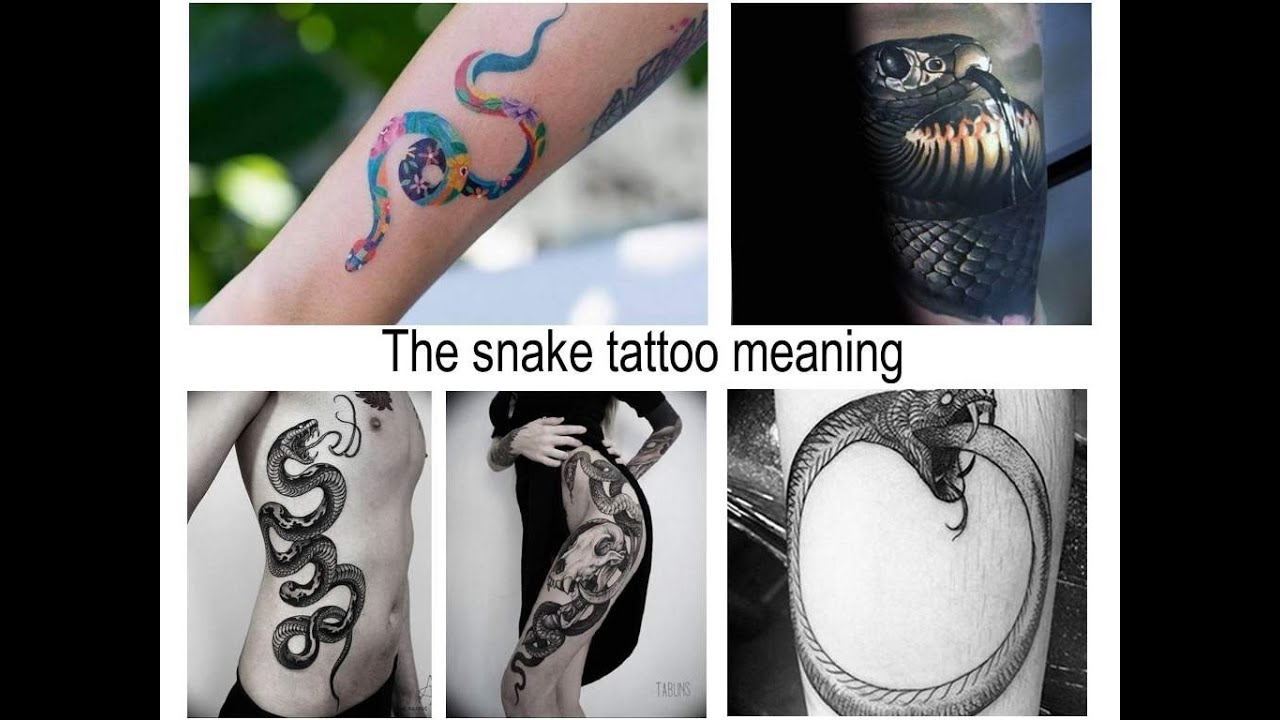 The Snake Tattoo Meaning Features And Photo Examples For The Site Tattoovaluenet