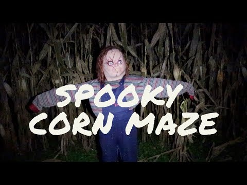 Getting Lost In the Verona Corn Maze!!
