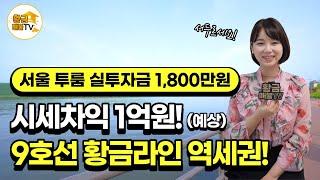 [부동산 투자] 서울 투룸 실투자금 1,800만원! 1…