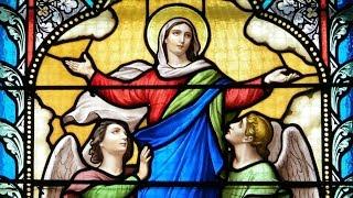 Video: Thánh lễ Đức Mẹ Hồn Xác Lên Trời 15/08/2017 dành cho những người không thể đến nhà thờ