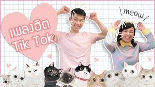 แกะท่าเต้นเพลงฮิต Tik Tok : Xue Mao Jiao เหมียว เหมียว「Learn to Meow 学猫叫」|เจ๋อโบ กวนจีน 哲哲X波波