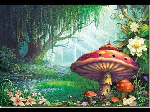 El Bosque Encantado | Cuento | Narración: Jorge Agüero - YouTube