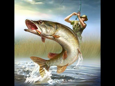 Как варить перловку для рыбалки! 23 06 2015г / How to cook barley for fishing ! June 23 2015