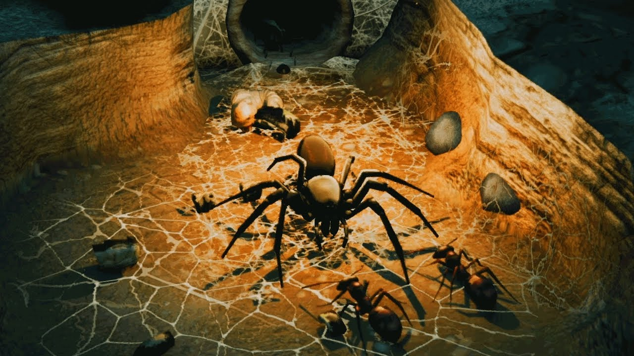 Wood Wallpaper Hd Empires Of The Undergrowth Ants Vs Funnel Web Spider