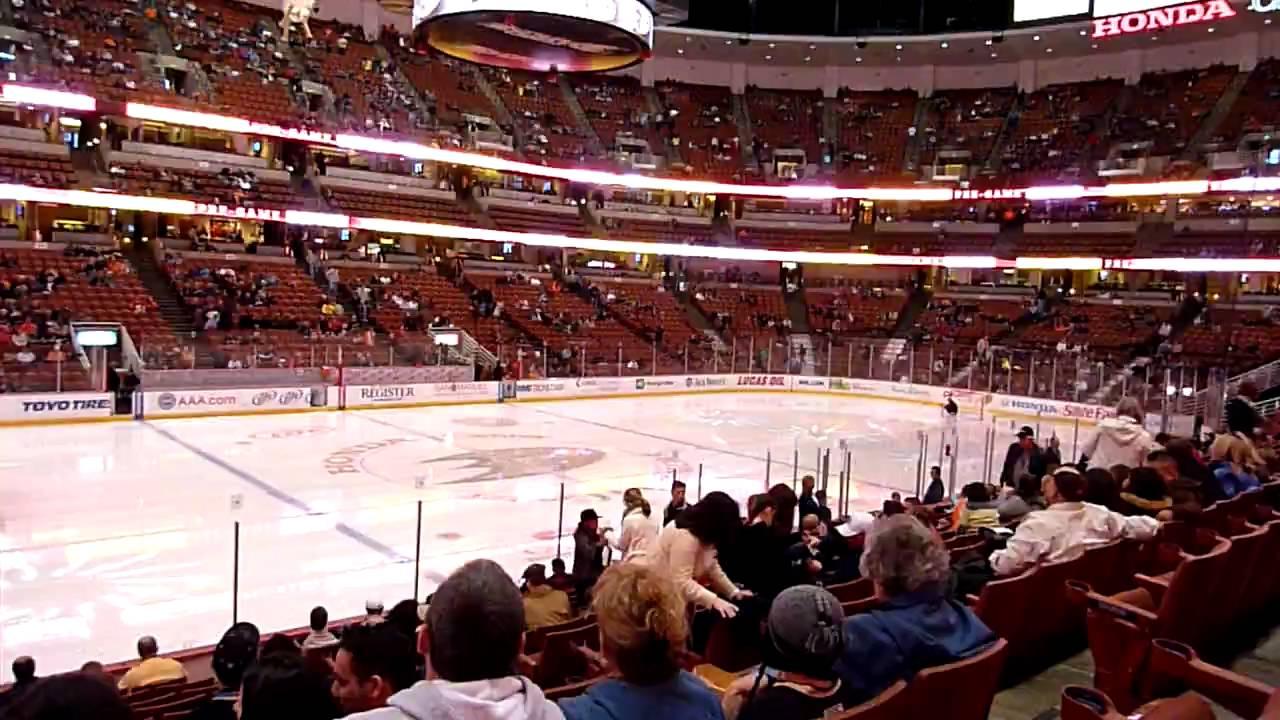 Anaheim net sports adultes
