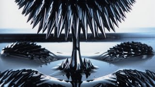 How to make homemade ferrofluid