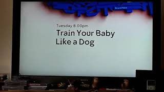 We Bought A Zoo Channel 4 Intro