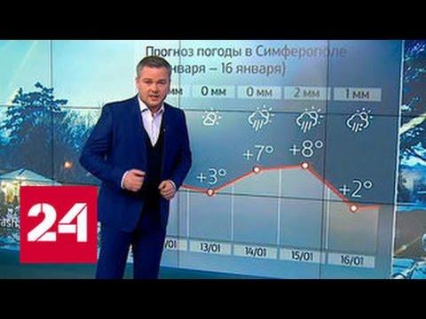 'Погода 24': мощный циклон принесет в Москву снегопады