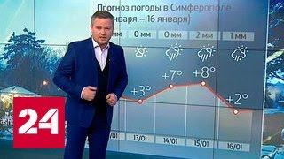 """""""Погода 24"""": мощный циклон принесет в Москву снегопады"""