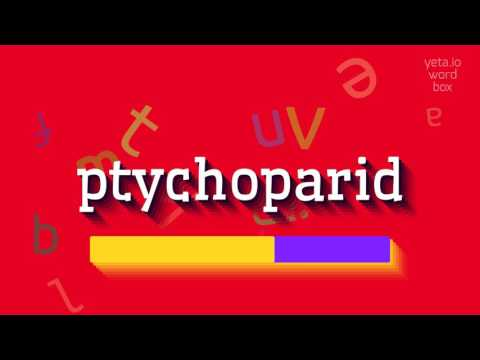 "How to say ""ptychoparid""! (High Quality Voices) thumbnail"
