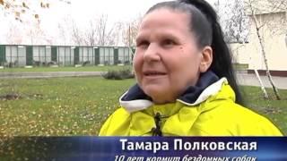 Ахметов построил в Донецке приют для бездомных собак