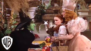 The Wizard of Oz: I'll Get You My Pretty! thumbnail