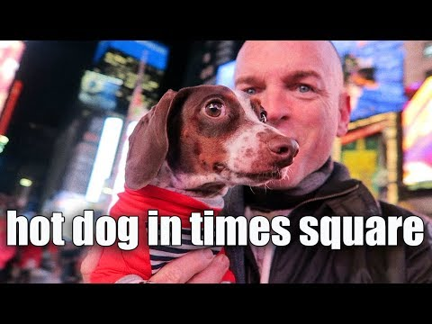 HOT DOG IN TIMES SQUARE -  vlog113