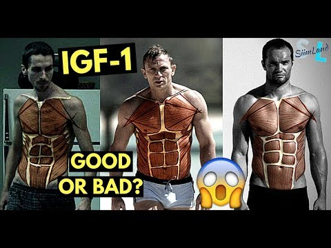 Is IGF-1 Good or Bad for Longevity