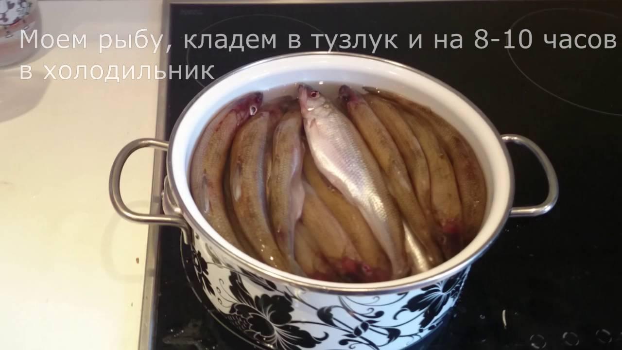 Сушилка рыбы - Авито объявления в, москве