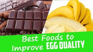 Foods That Increase Fertility | Best Foods to Improve Egg Quality