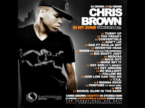 15. Chris Brown - Twitter (In My Zone)