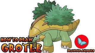 How To Draw Grotle Pokemon | Coloring and Drawing For Kids