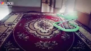 Мишка гумибер