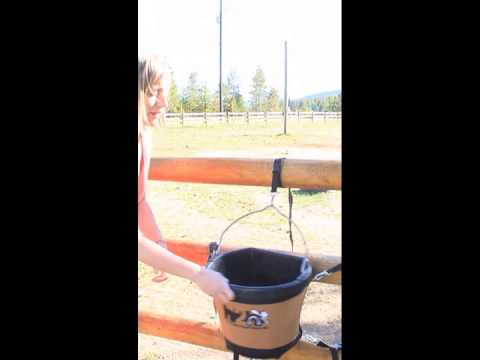 Buck-It! Cover - How To Secure Your Feed Bucket Cover From The Head 2 Hoof Shop