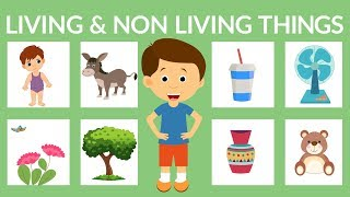 Living and Non-living Things for Kids | Living Things | Non-living Things