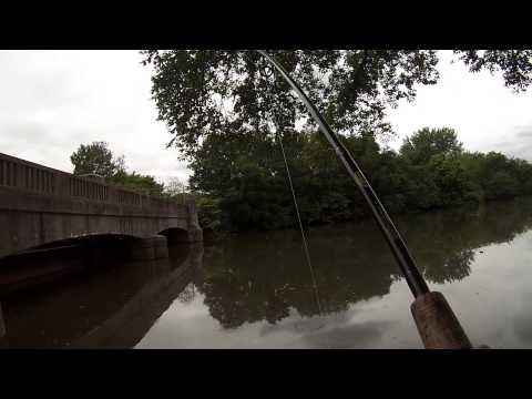 Fishing For White Catfish At The Cooper River (Camden, NJ)