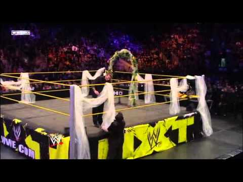BehindThes  WWE NXT 11210