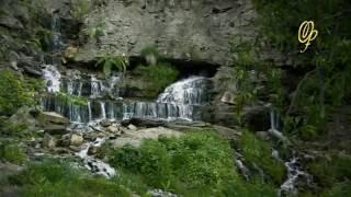Виктория ПреобРАженская о том, как очищать воду и еду