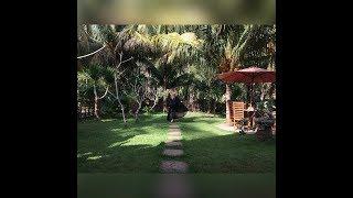 видео остров Нуса-Пенида Индонезия отели отель