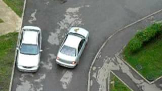 Кошка прогуливается на автомобиле по улице