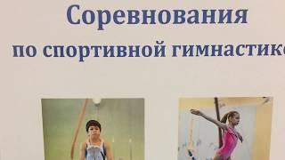 Соревнования по спортивной гимнастике 3 взрослый разряд.
