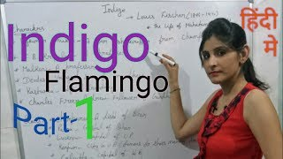 Indigo summary in Hindi of class 12th
