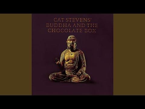 Top 10 Cat Stevens Songs