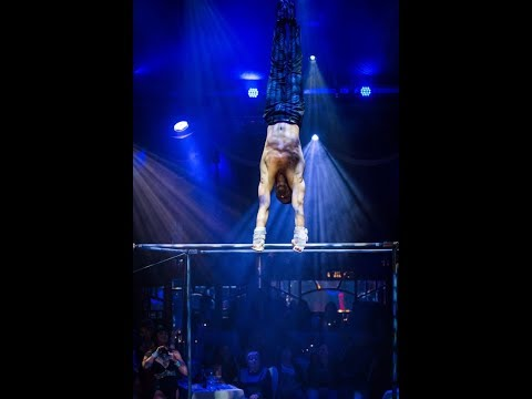 High bars parallel Circus Act Variety Performance Entertainment Party event Gymnastics Acrobatics