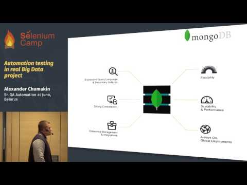 Automation testing in real Big Data project (Alexander Chumakin, Belarus)