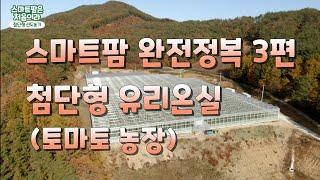 스마트팜 탐방기 3편. 첨단형 유리온실. 토마토 농장.…